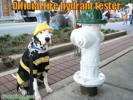official fire hydrant tester