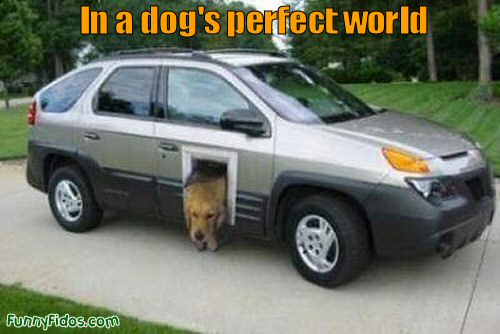 doggie door for a car