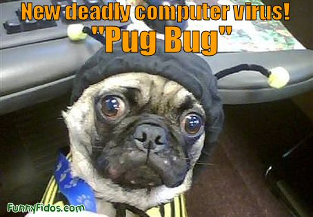 "deadly ""Pug Bug\"""