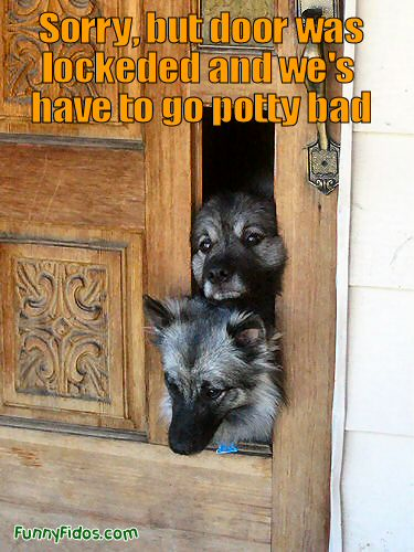 funny picture of two dogs breaking through a door