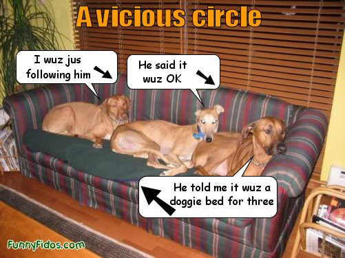 three dogs blaming each other why they\'re on the couch