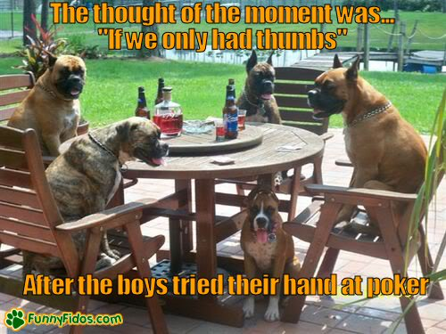 Dogs sitting around a table
