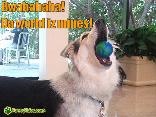 dog chewing a ball that looks like the world