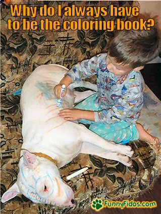 kid using the dog as a coloring book