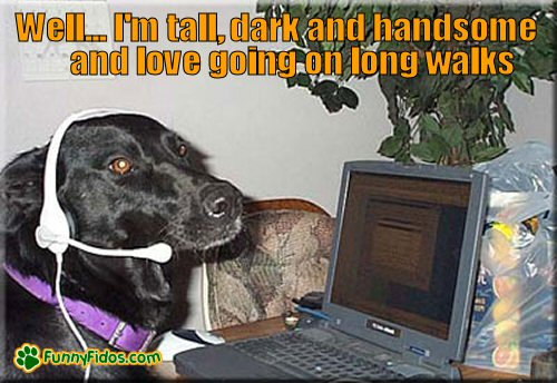 dog chatting online