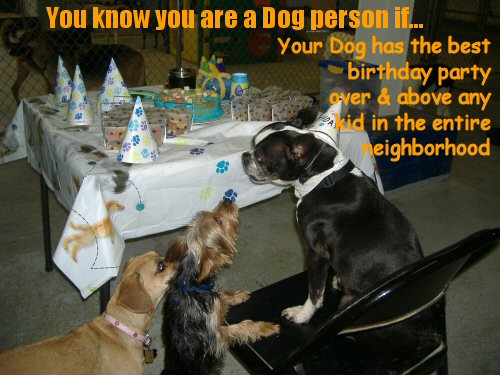 dog having a birthday party