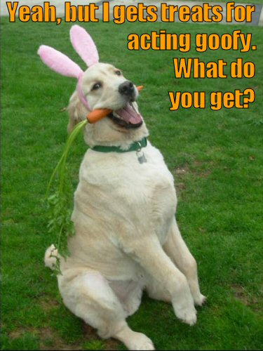 dog with bunny ears and a carrot