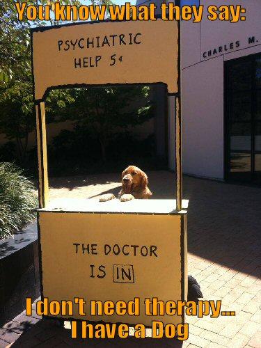 Dog Psychiatrist