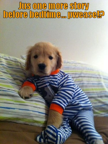 Cute puppy wearing pajamas