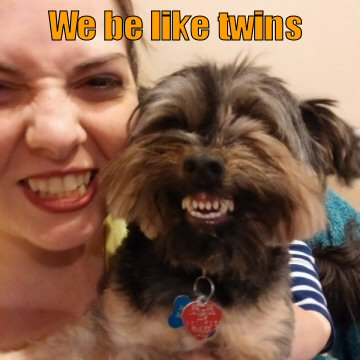 funny-dog-picture-we-be-like-twins